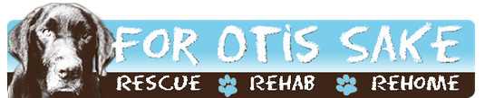 For Otis Sake Logo
